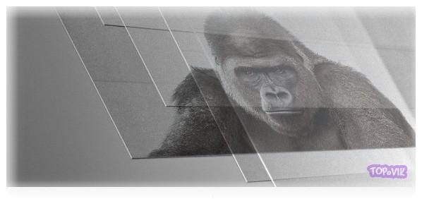 Стекло Corning Gorilla Glass