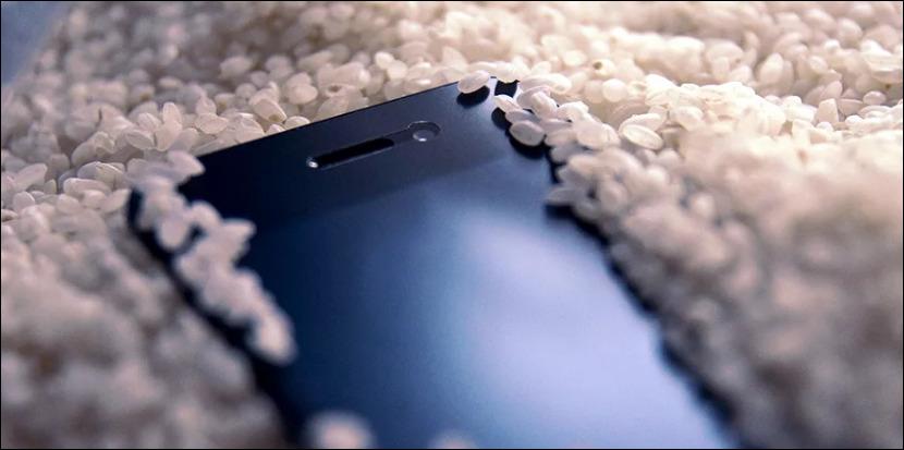 Телефон упал в воду: Что делать?